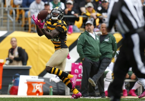 Sammie Coates may be the second receiving weapon the Steelers need. (Getty Images)